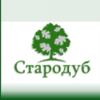 Стародуб (Россия)